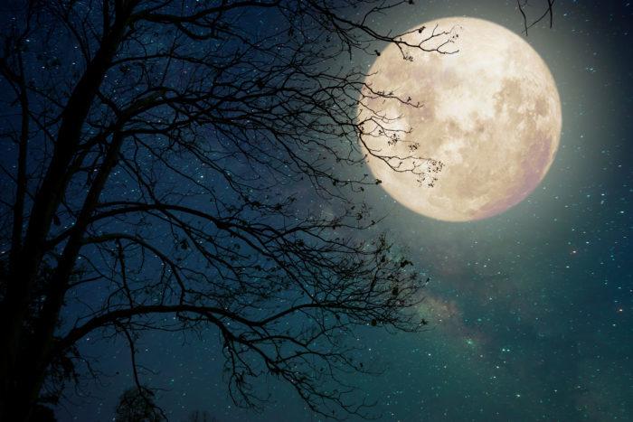 Manifesteren op het ritme van de maan 3
